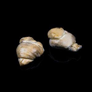 AGRCIOLA-CIIRCE-nodini-affumicati