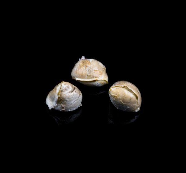 AGRCIOLA-CIIRCE-ovoline-affumicate